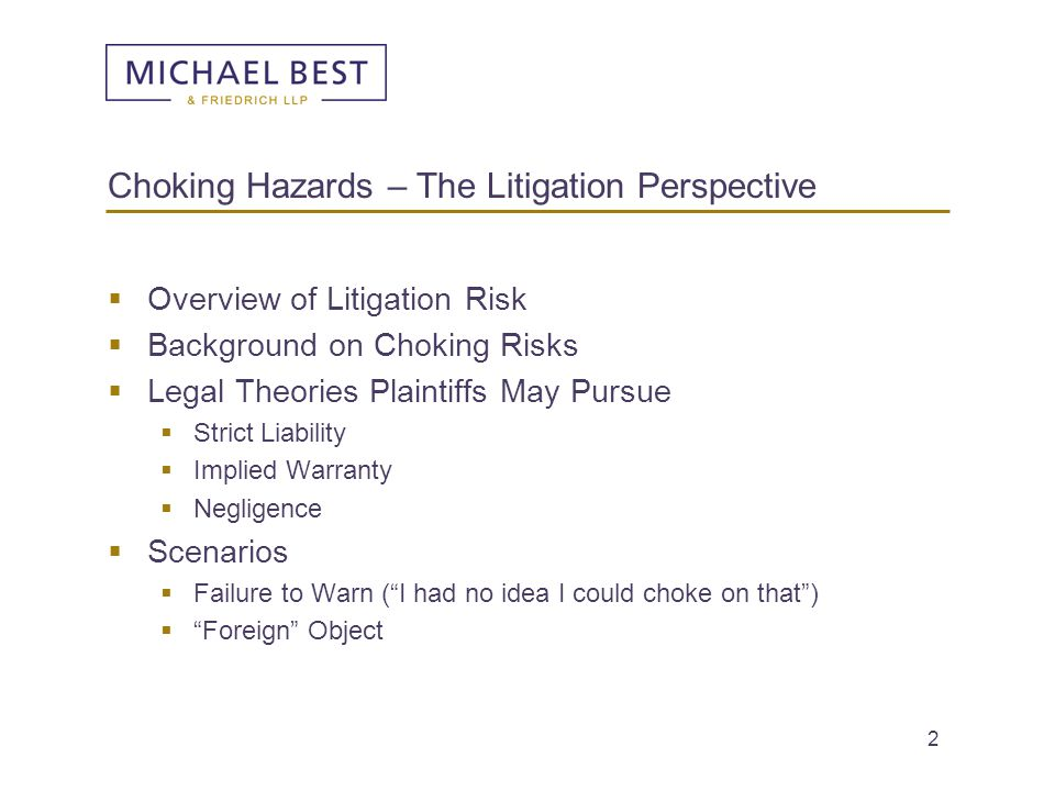 Choking Hazards – The Litigation Perspective