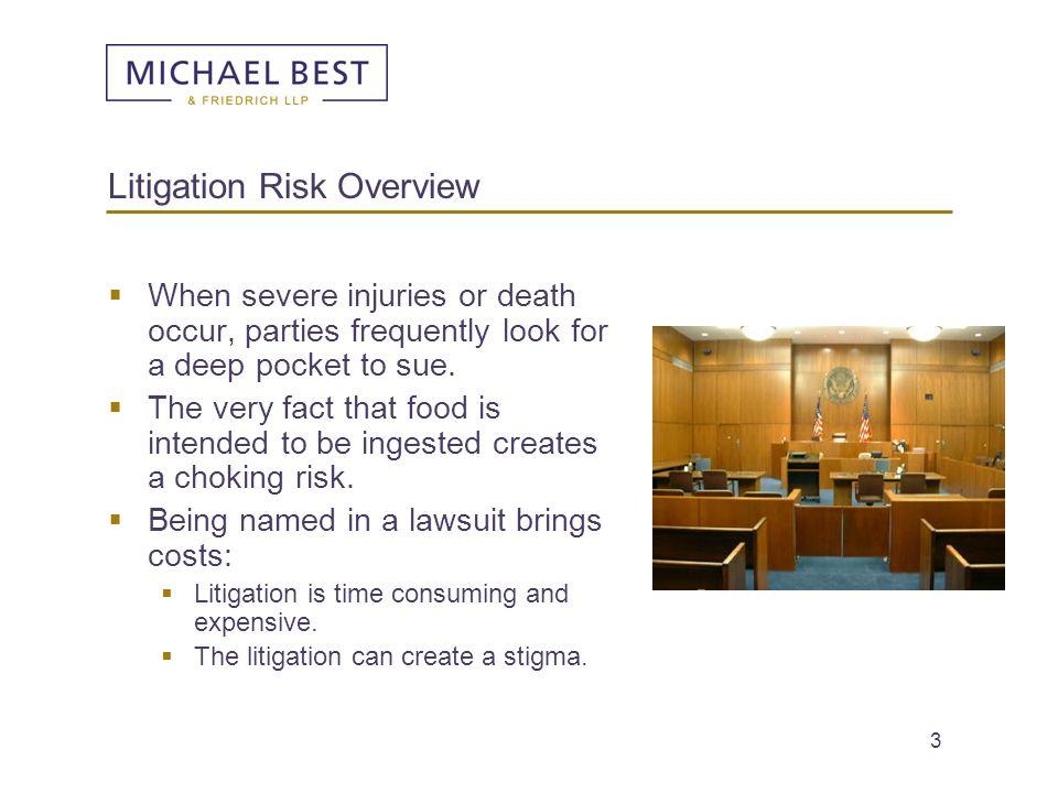 Litigation Risk Overview
