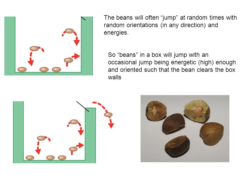 The beans will often jump at random times with random orientations (in any direction) and energies.