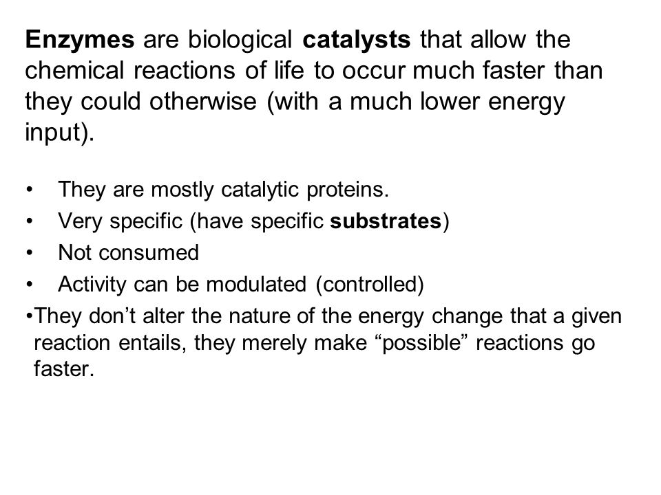 enzymes: catalysts of life essay Amylase and catalase enzyme catalysts biology essay an enzyme is a accelerator that speeds up the rate of reactions by take downing the activation energy each enzyme works better under optimum conditions, which favor the most active form for the enzyme molecule.
