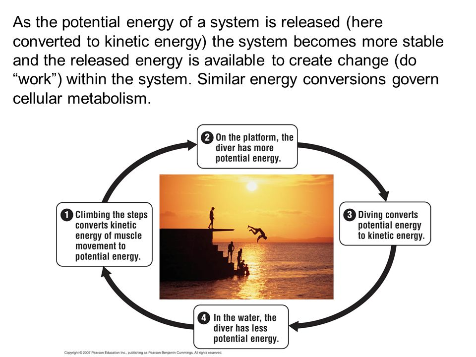 As the potential energy of a system is released (here converted to kinetic energy) the system becomes more stable and the released energy is available to create change (do work ) within the system.