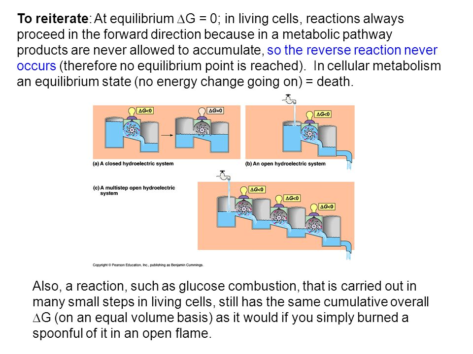 To reiterate: At equilibrium G = 0; in living cells, reactions always proceed in the forward direction because in a metabolic pathway products are never allowed to accumulate, so the reverse reaction never occurs (therefore no equilibrium point is reached). In cellular metabolism an equilibrium state (no energy change going on) = death.