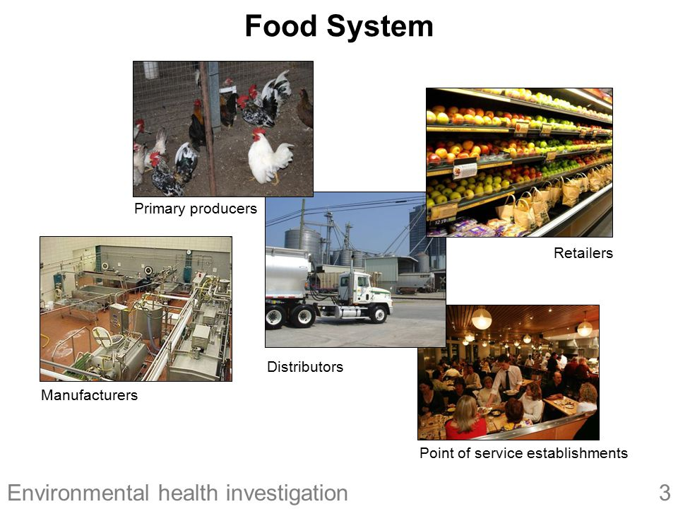 Food System Primary producers Retailers Distributors Manufacturers