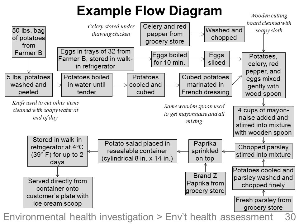 Example Flow Diagram > Env't health assessment
