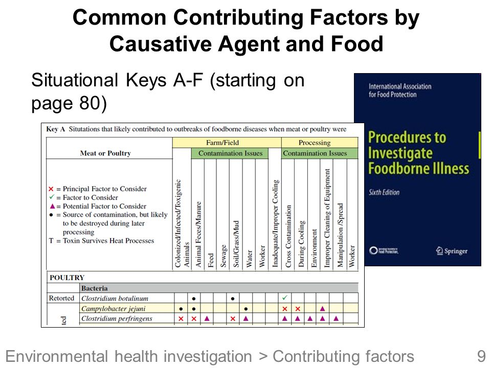 Common Contributing Factors by Causative Agent and Food
