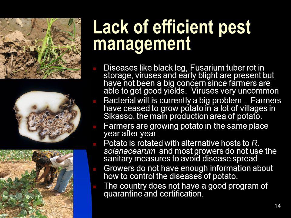 Lack of efficient pest management