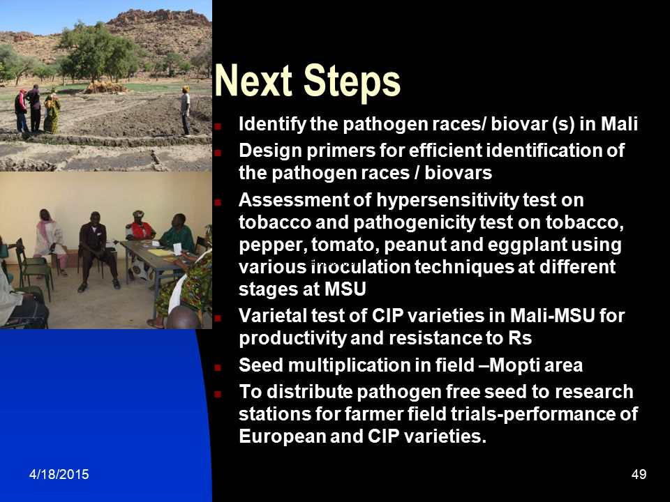 Next Steps Identify the pathogen races/ biovar (s) in Mali
