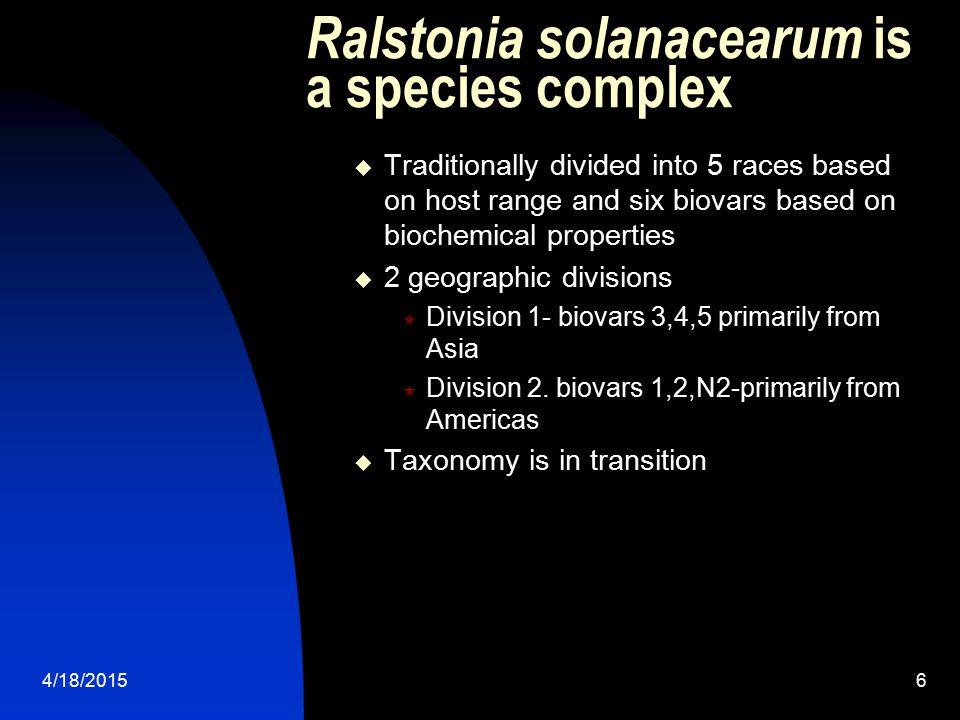 Ralstonia solanacearum is a species complex