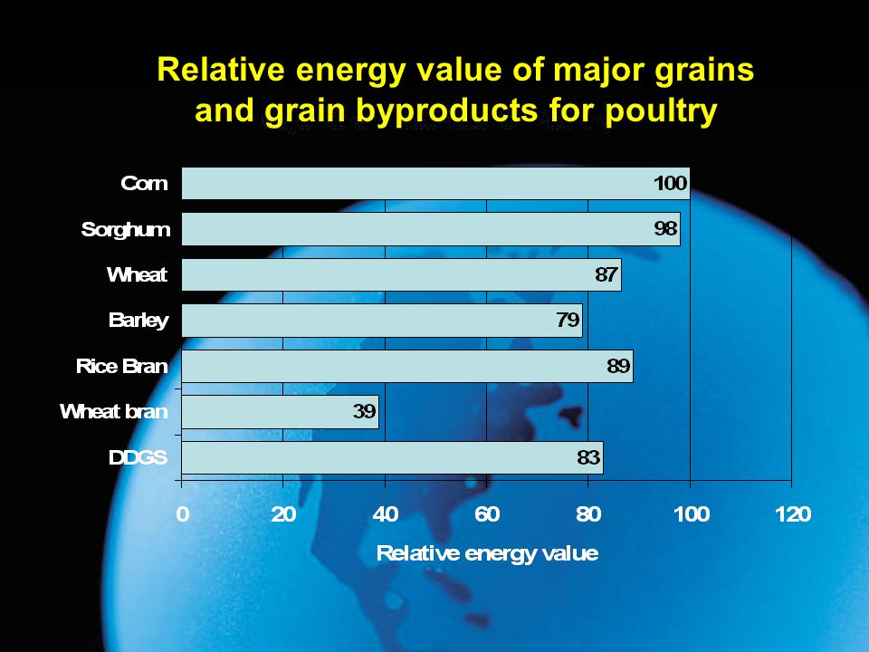 Relative energy value of major grains and grain byproducts for poultry