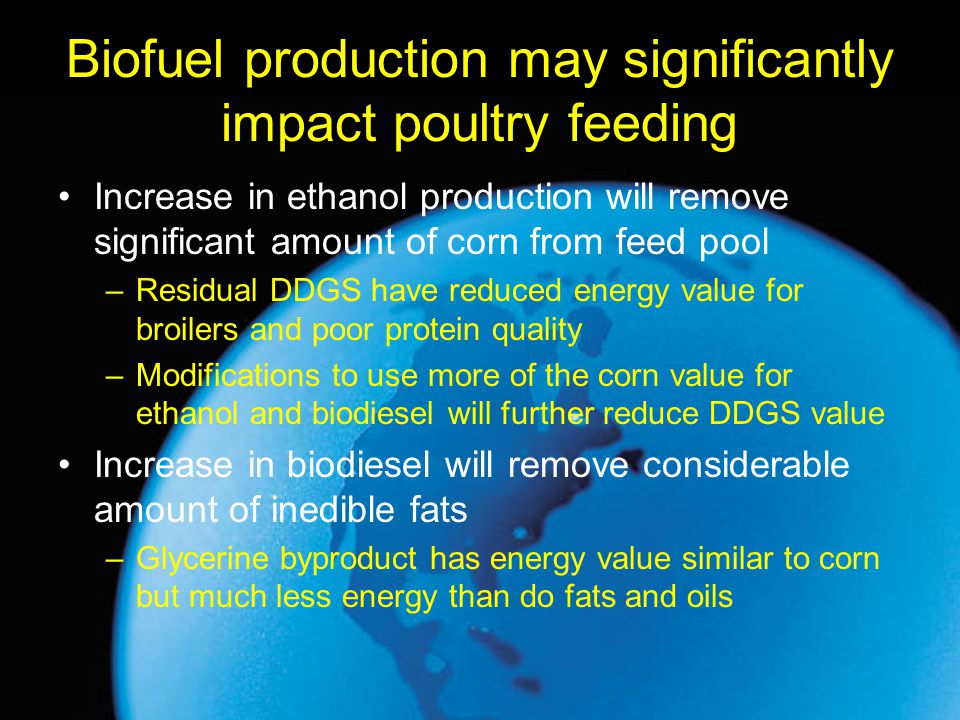 Biofuel production may significantly impact poultry feeding
