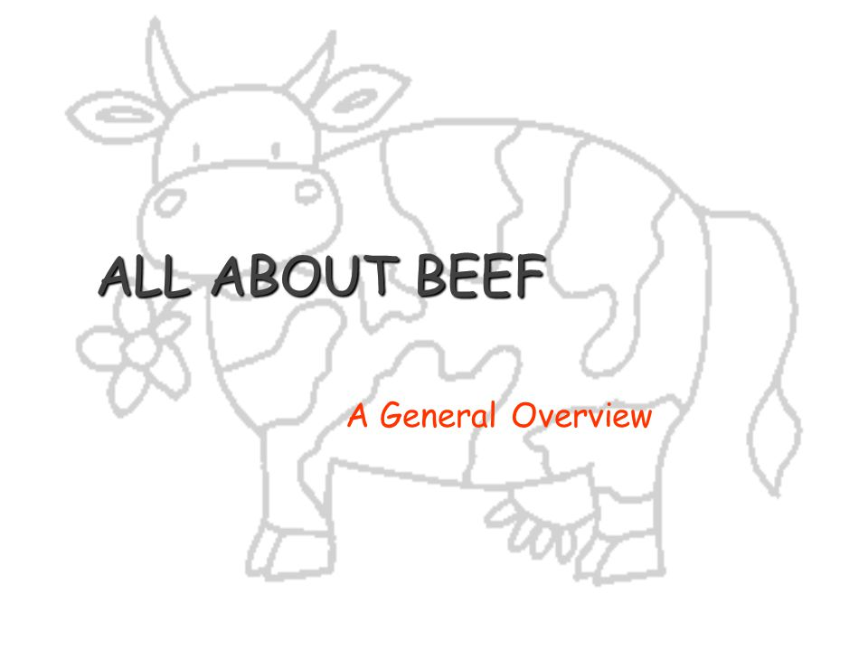 ALL ABOUT BEEF A General Overview