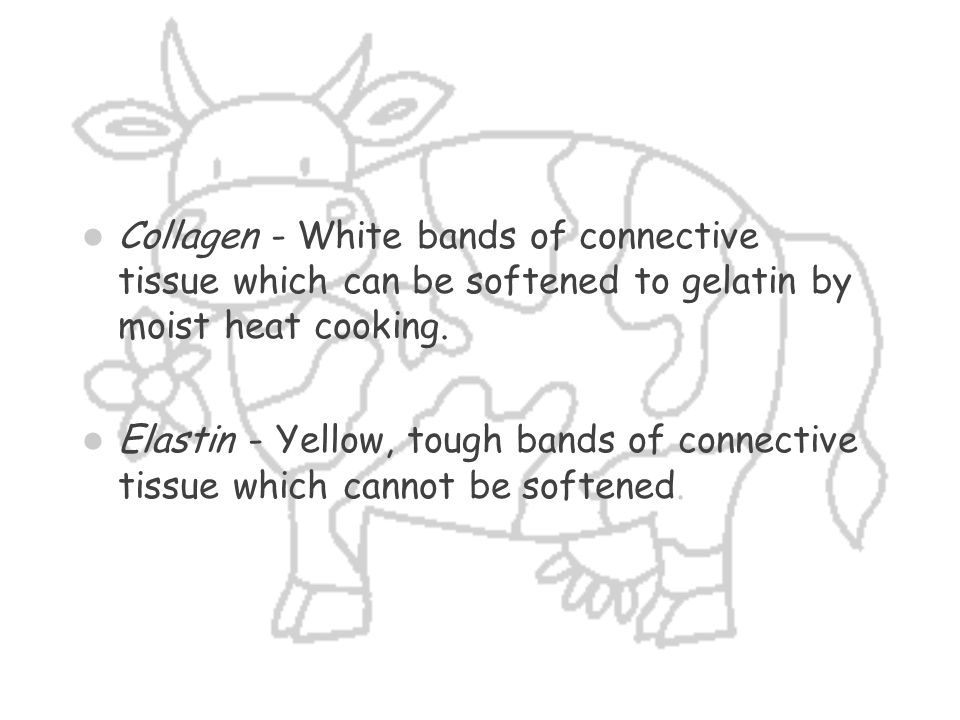 Collagen - White bands of connective tissue which can be softened to gelatin by moist heat cooking.