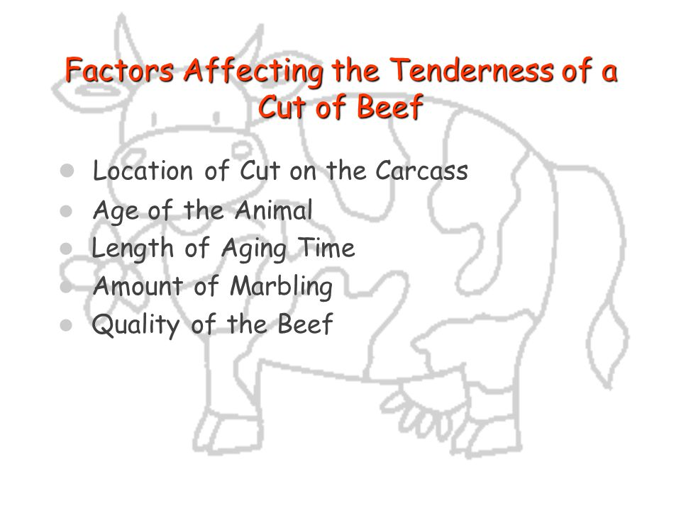 Factors Affecting the Tenderness of a Cut of Beef