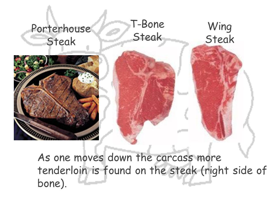 T-Bone Steak Wing Steak Porterhouse Steak