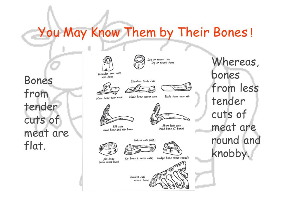 You May Know Them by Their Bones !