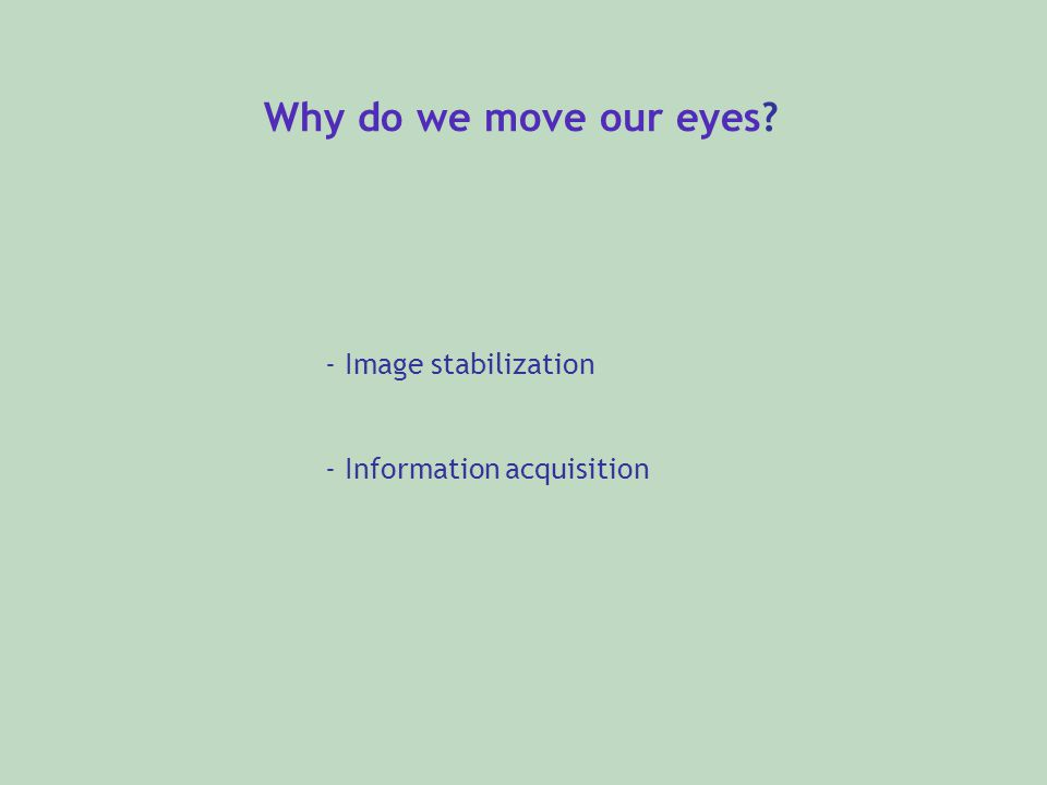 Why do we move our eyes - Image stabilization