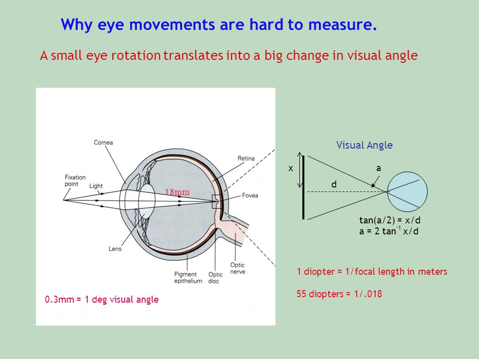 Why eye movements are hard to measure.