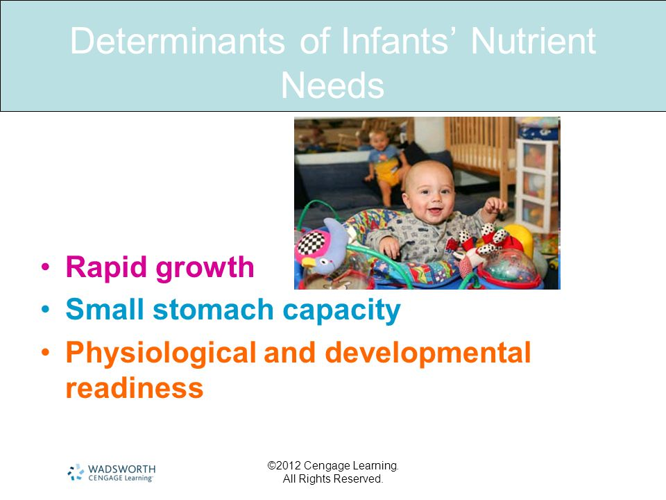 Determinants of Infants' Nutrient Needs