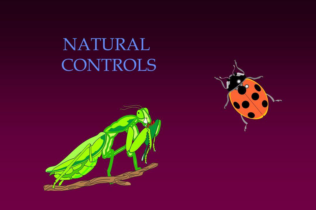 NATURAL CONTROLS