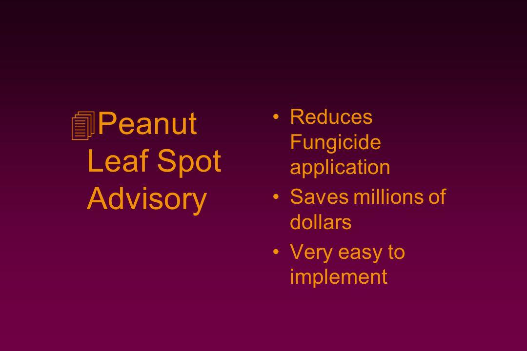 Peanut Leaf Spot Advisory