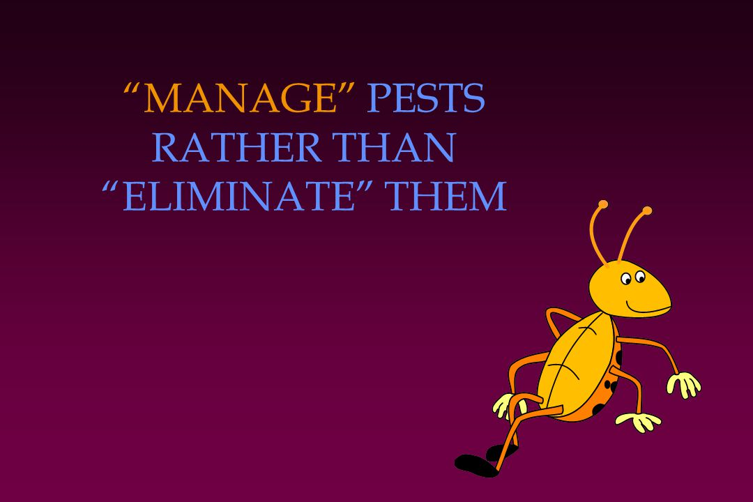 MANAGE PESTS RATHER THAN ELIMINATE THEM