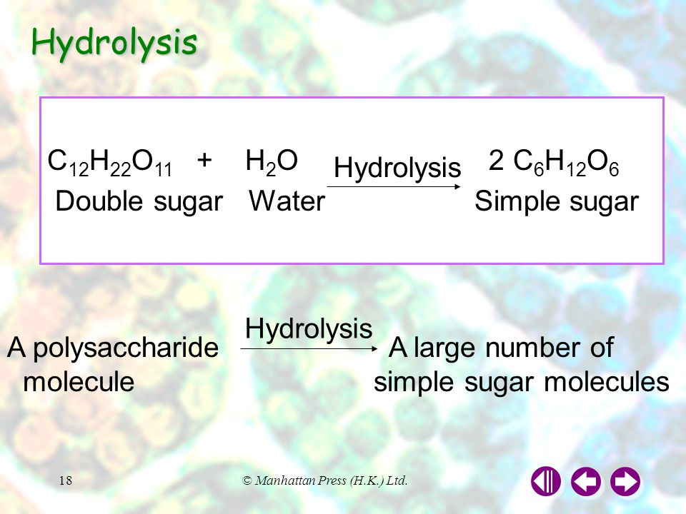 Hydrolysis C12H22O11 + H2O 2 C6H12O6 Double sugar Water Simple sugar