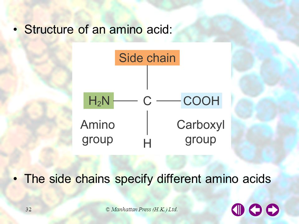 Structure of an amino acid: