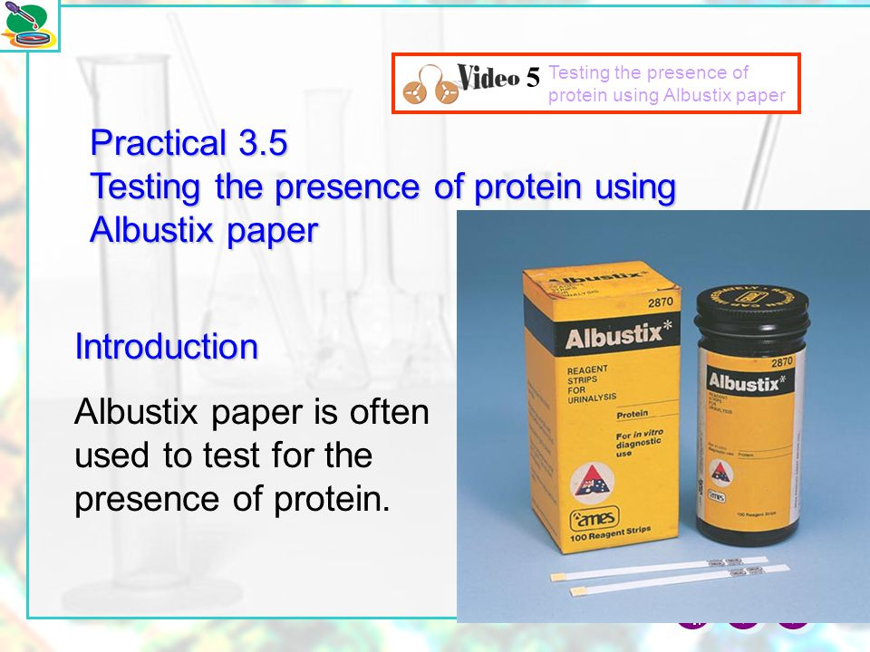 Practical 3.5 Testing the presence of protein using Albustix paper