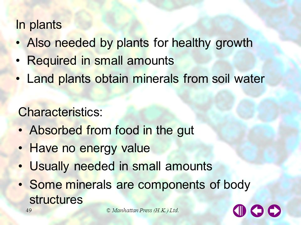 Also needed by plants for healthy growth Required in small amounts