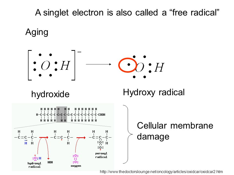 A singlet electron is also called a free radical