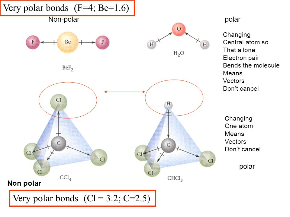 Very polar bonds (F=4; Be=1.6)