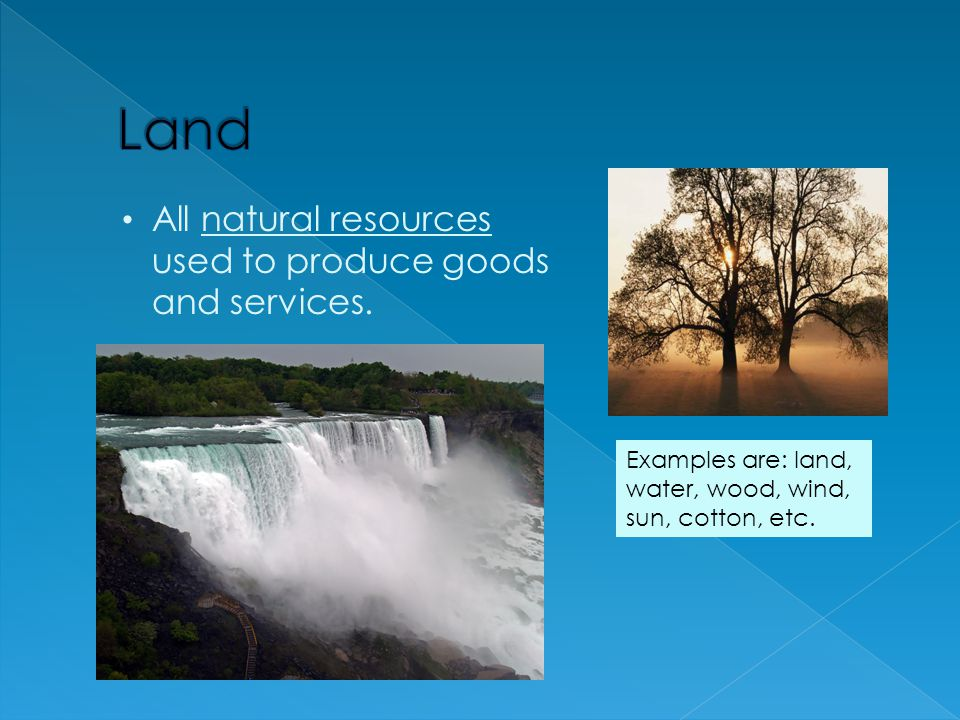 Land All natural resources used to produce goods and services.