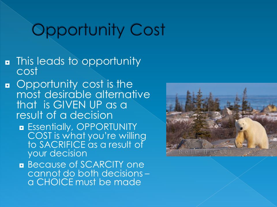 Opportunity Cost This leads to opportunity cost
