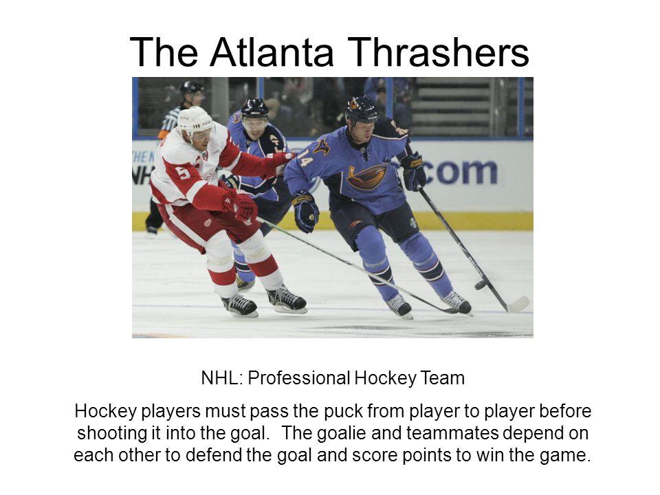 NHL: Professional Hockey Team