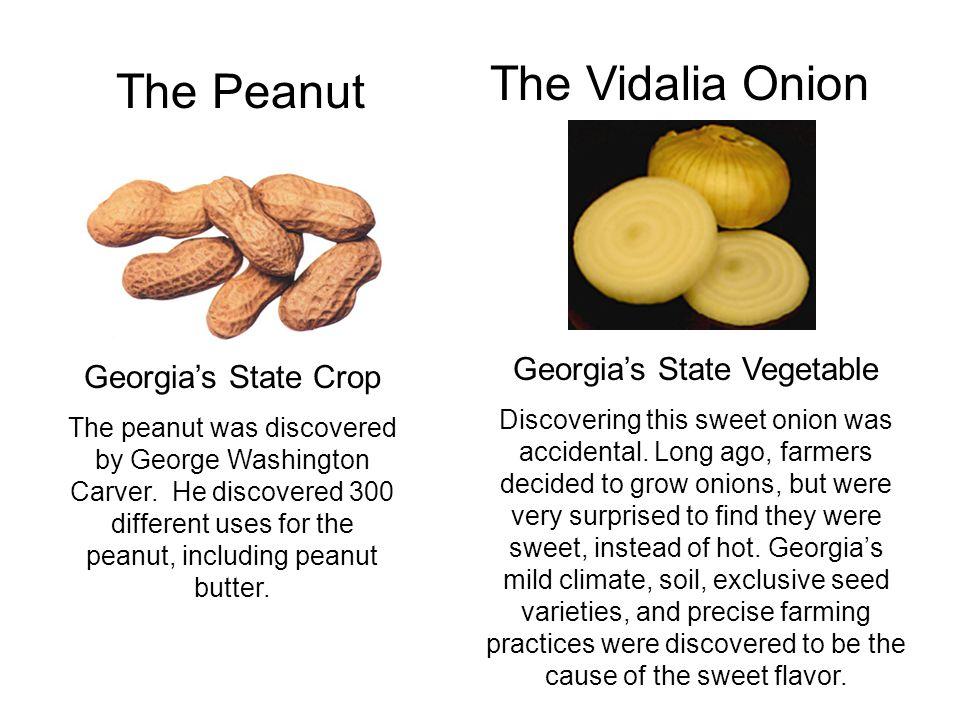 Georgia's State Vegetable