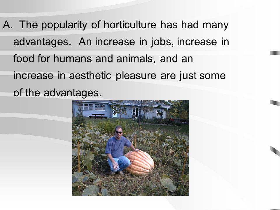 A. The popularity of horticulture has had many advantages