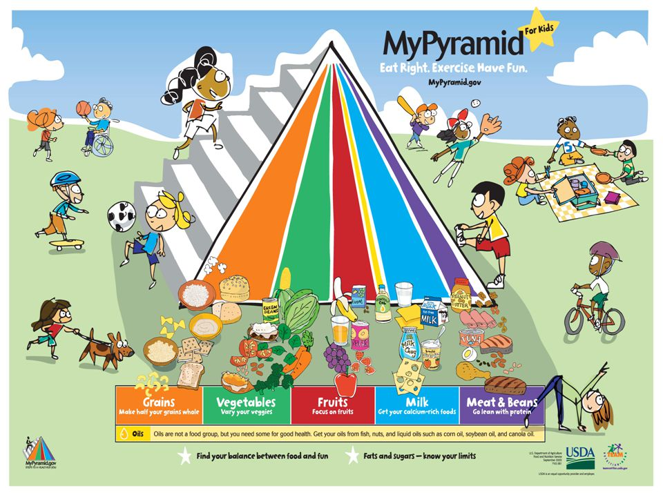 The MyPyramid is appropriate for children starting at age 2