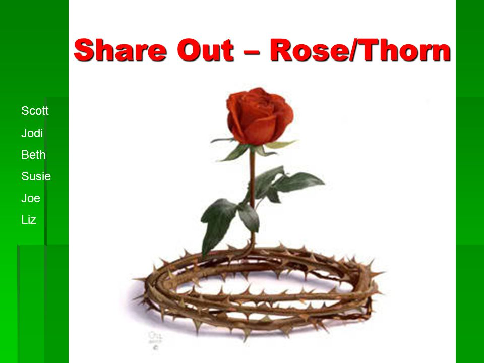 Share Out – Rose/Thorn Scott Jodi Beth Susie Joe Liz