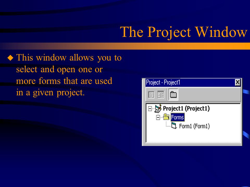 The Project Window This window allows you to select and open one or more forms that are used in a given project.