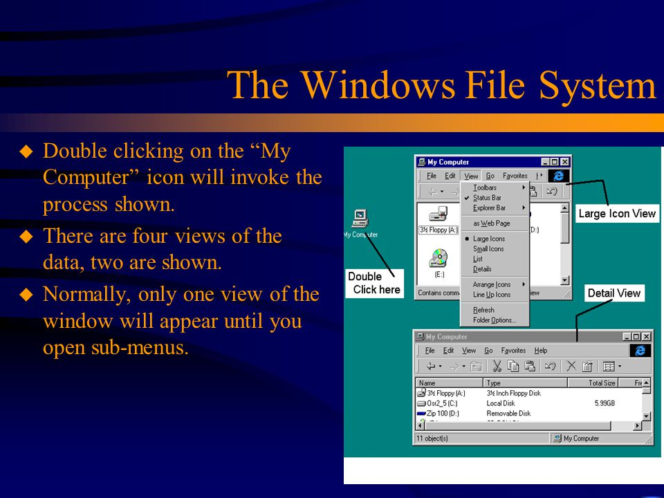 The Windows File System