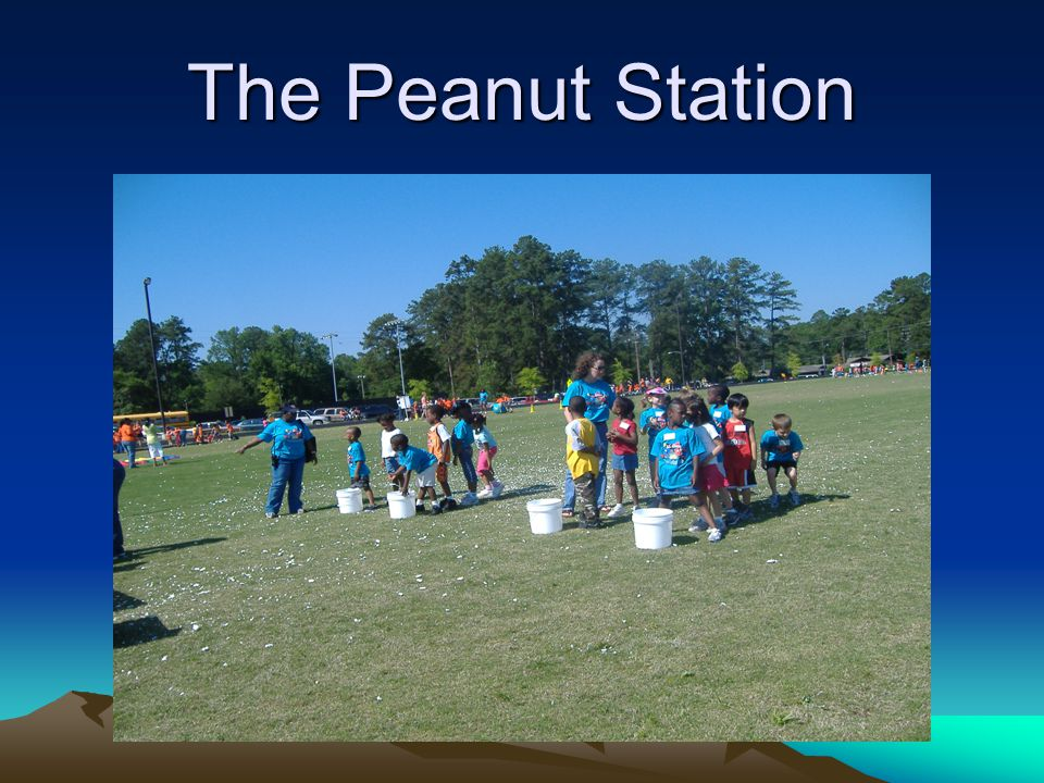 The Peanut Station