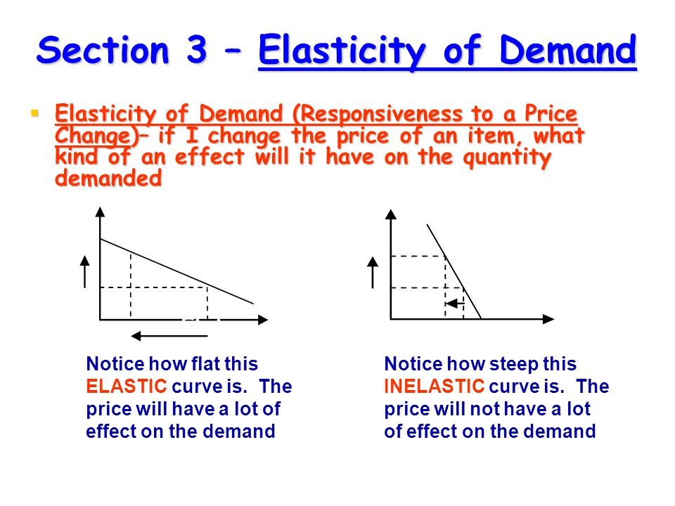 Section 3 – Elasticity of Demand