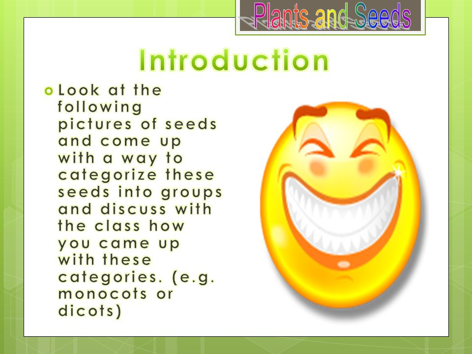 Introduction Plants and Seeds