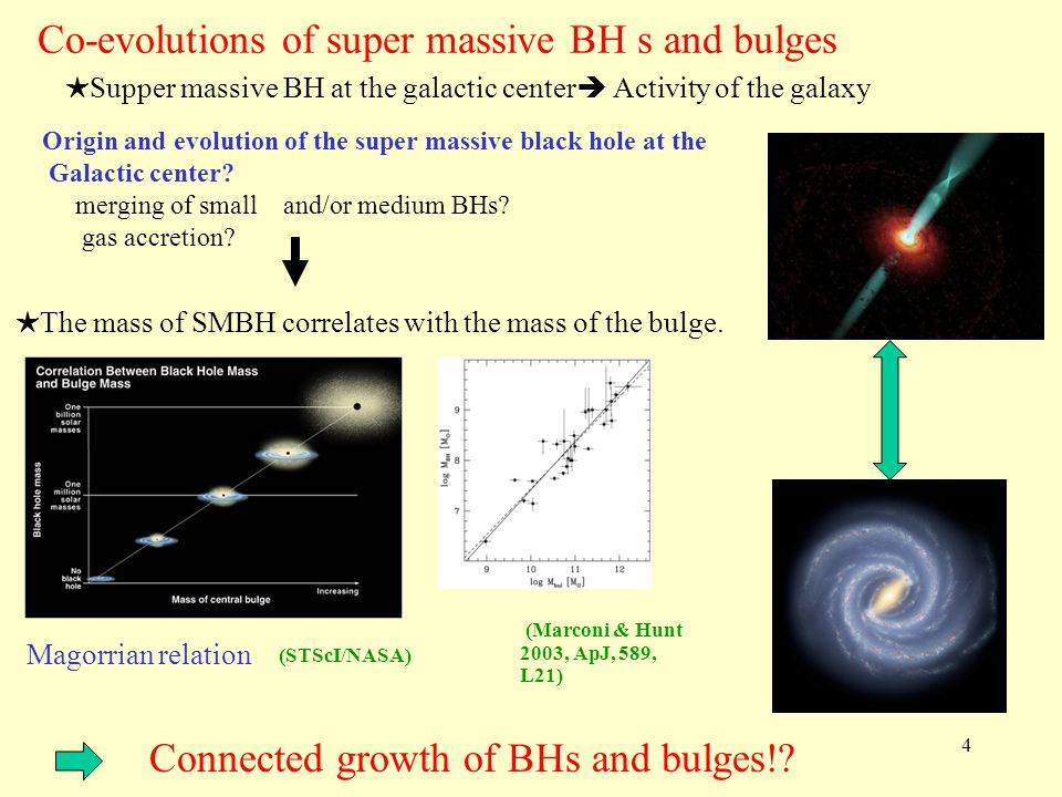 Co-evolutions of super massive BH s and bulges