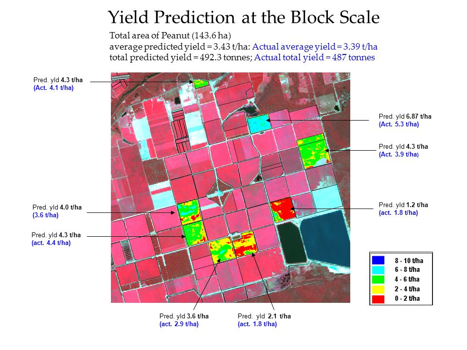 Yield Prediction at the Block Scale