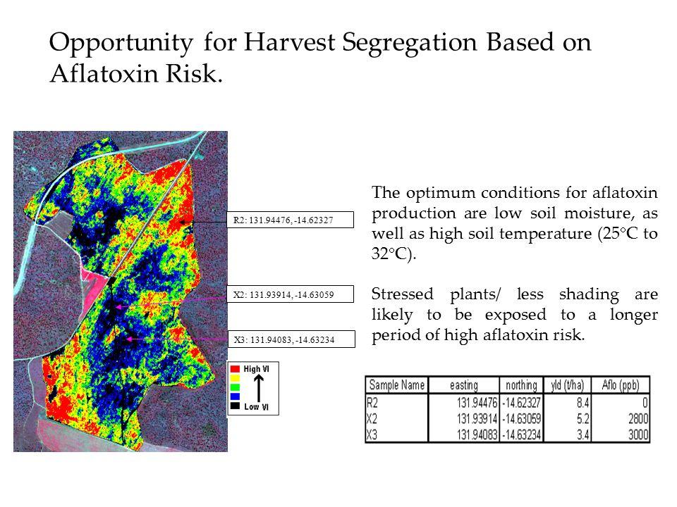 Opportunity for Harvest Segregation Based on Aflatoxin Risk.