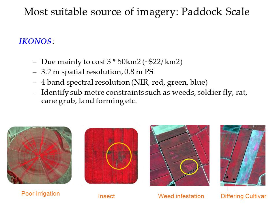Most suitable source of imagery: Paddock Scale