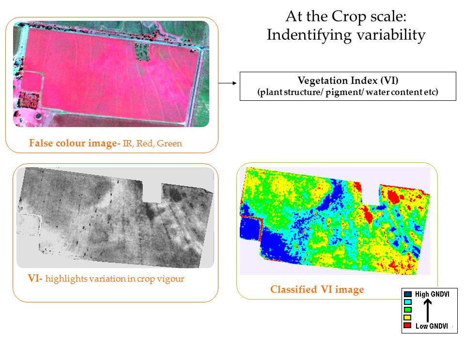 At the Crop scale: Indentifying variability