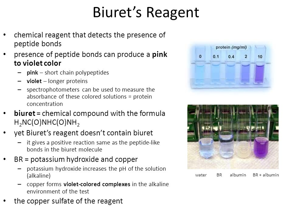 Biuret's Reagent chemical reagent that detects the presence of peptide bonds. presence of peptide bonds can produce a pink to violet color.