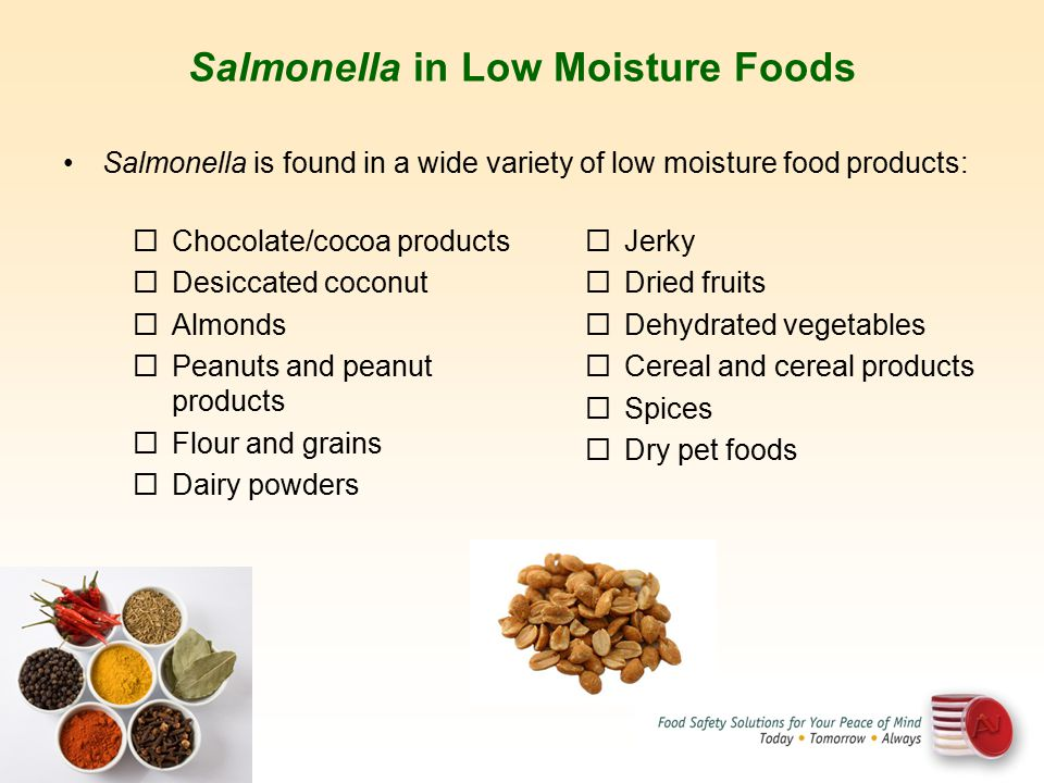 Salmonella in Low Moisture Foods